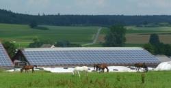 Nutztierhalle in Horgau-Bieselbach: 65 kWp auf Ziegeldach